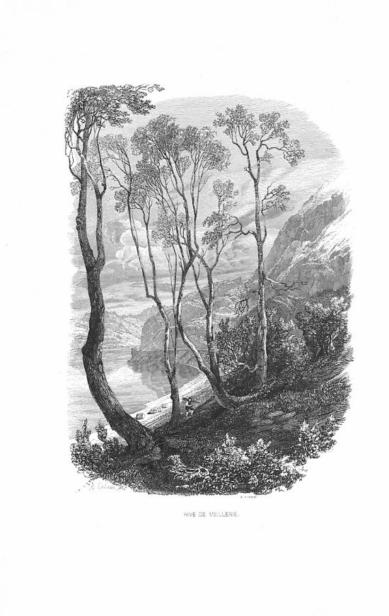 Bois de Meillerie